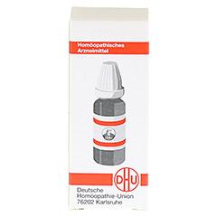 RHUS TOXICODENDRON C 4 Globuli 10 Gramm N1 - Rückseite