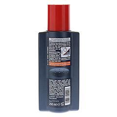 ALPECIN Coffein Shampoo C1 250 Milliliter - Rückseite
