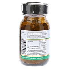 DHA PLUS pflanzlich Omega-3-Fettsäuren Kapseln 70 Stück - Rechte Seite