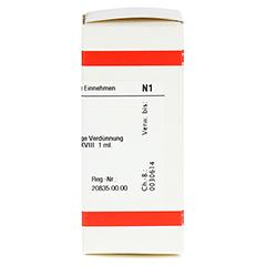 LM ARGENTUM nitricum XVIII Dilution 10 Milliliter N1 - Rechte Seite