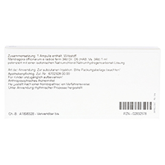 MANDRAGORA OFFICINARIUM e radice D 6 Ampullen 10x1 Milliliter N1 - Rückseite