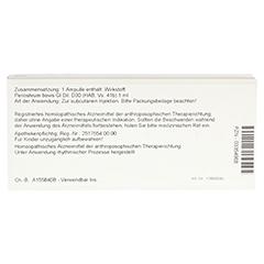 PERIOSTEUM GL D 30 Ampullen 10x1 Milliliter N1 - Rückseite