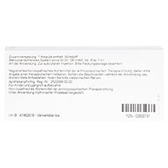 RETICULOENDOTHELIALES SYS. GL D 6 Ampullen 10x1 Milliliter N1 - Rückseite