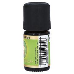 RAVINTSARA Bio ätherisches Öl 5 Milliliter - Linke Seite