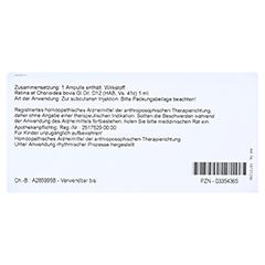 RETINA ET Chorioidea GL D 12 Ampullen 10x1 Milliliter N1 - Rückseite