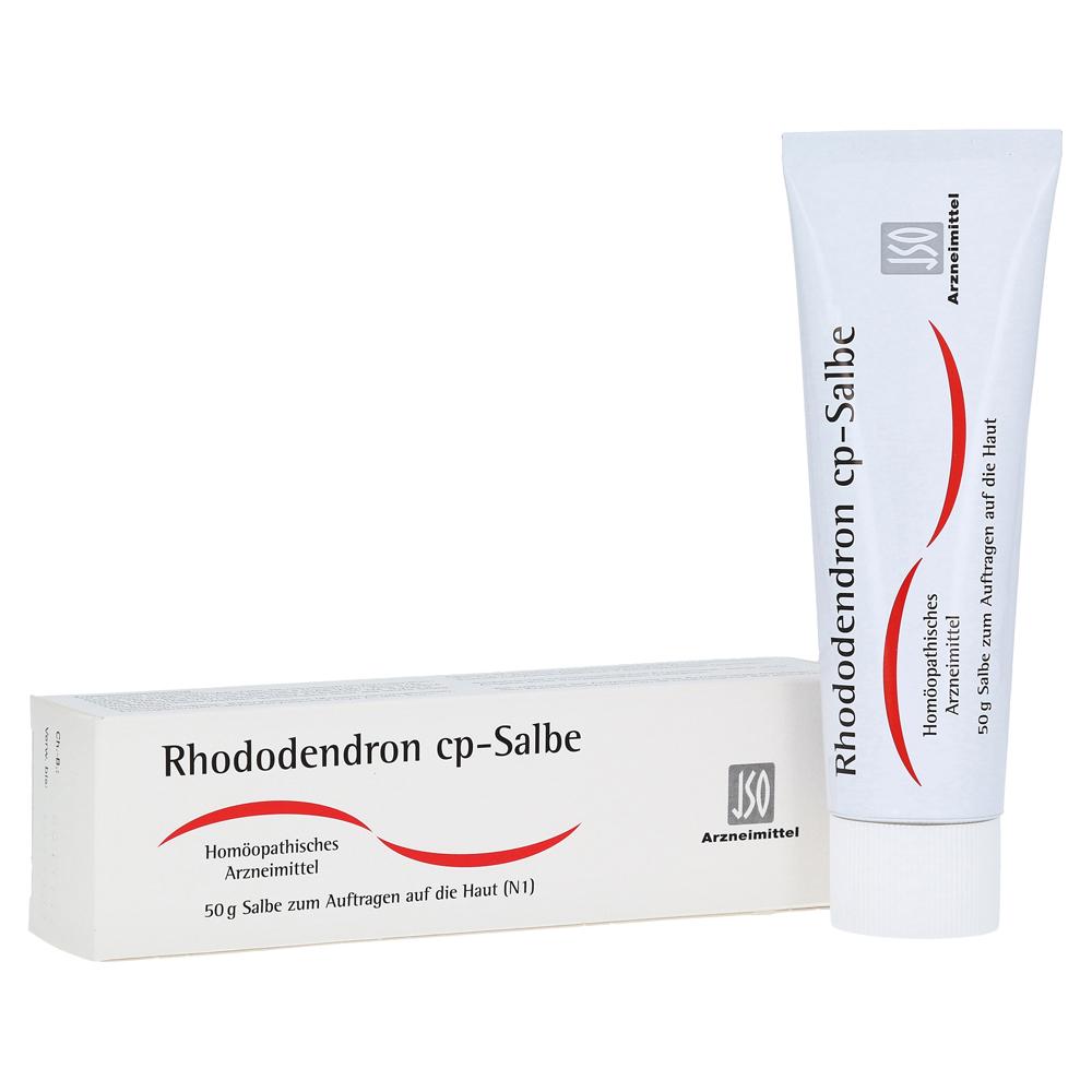 Erfahrungen zu RHODODENDRON CP Salbe 50 Gramm N1 - medpex