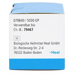 BRONCHOBINI Globuli 2 Gramm N1 - Linke Seite