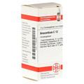 ANACARDIUM C 12 Globuli 10 Gramm N1
