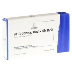 BELLADONNA RADIX Rh D 20 Ampullen 8x1 Milliliter N1