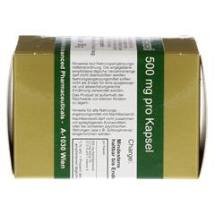 NACHTKERZENÖL 500 mg pro Kapsel 80 Stück - Rechte Seite