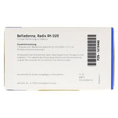 BELLADONNA RADIX Rh D 20 Ampullen 8x1 Milliliter N1 - Rückseite