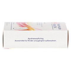 HEUSCHNUPFENMITTEL DHU Tabletten 100 Stück N1 - Rechte Seite