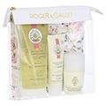 R&G Fleur d'Osmanthus Sommer Hygiene-Set 1 Packung