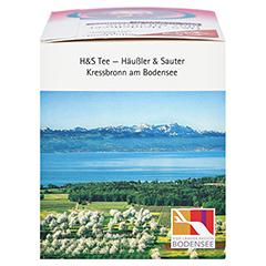 H&S Heidelbeer plus Vitamine Filterbeutel 20x2.5 Gramm - Rechte Seite