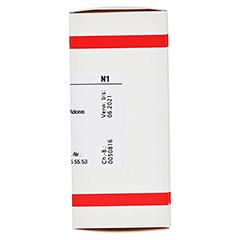 ADONIS VERNALIS D 3 Tabletten 80 Stück N1 - Rechte Seite