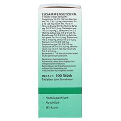 DERIVATIO Tabletten 100 Stück N1 - Rechte Seite