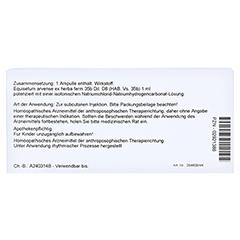 EQUISETUM EX Herba D 8 Ampullen 10x1 Milliliter N1 - Rückseite