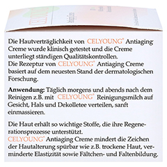 CELYOUNG Antiaging Creme 30 Milliliter - Linke Seite