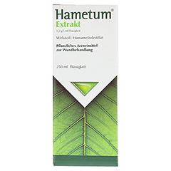 Hametum Extrakt 250 Milliliter - Vorderseite