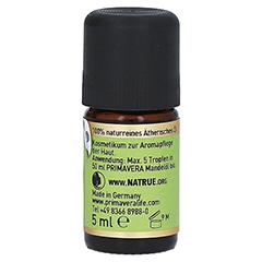 PRIMAVERA Eukalyptus Öl Citriodora kbA 5 Milliliter - Rechte Seite