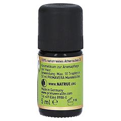 SCHAFGARBE Bio ätherisches Öl 5 Milliliter - Rechte Seite