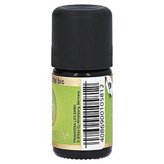 SCHAFGARBE Bio ätherisches Öl 5 Milliliter - Linke Seite