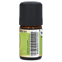 PRIMAVERA Eukalyptus Öl Radiata kbA 5 Milliliter - Linke Seite