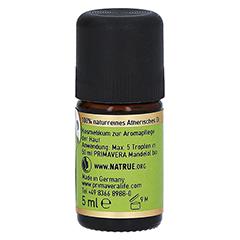 PRIMAVERA Zypresse kbA ätherisches Öl 5 Milliliter - Rechte Seite