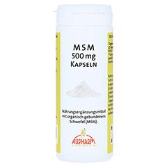 MSM Kapseln 500 mg 100 Stück