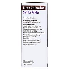 Umckaloabo Saft für Kinder 120 Milliliter N1 - Linke Seite