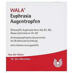Euphrasia Augentropfen 10x0.5 Milliliter N1 - Vorderseite