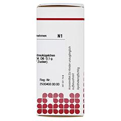 NUX VOMICA D 6 Globuli 10 Gramm N1 - Rechte Seite