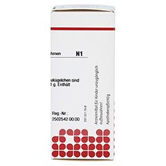 ARNICA C 30 Globuli 10 Gramm N1 - Rechte Seite