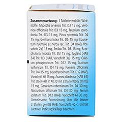 LYMPHOMYOSOT Tabletten 100 Stück N1 - Rechte Seite