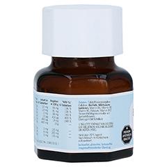 NATURAFIT Bio Darm Tabletten 40 Stück - Rückseite