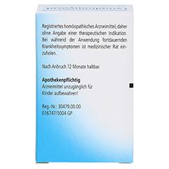 LYMPHOMYOSOT Tabletten 100 Stück N1 - Rückseite