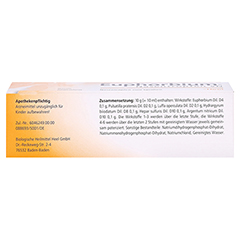 EUPHORBIUM COMPOSITUM Nasentr.SN Nasendosierspray 20 Milliliter N1 - Oberseite