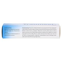 TRAUMEEL S Creme 100 Gramm N2 - Unterseite