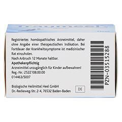 TRAUMEEL S Tabletten 50 Stück N1 - Unterseite
