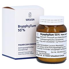 BRYOPHYLLUM 50% Pulver zum Einnehmen 50 Gramm N2