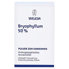 BRYOPHYLLUM 50% Pulver zum Einnehmen 50 Gramm N2 - Vorderseite