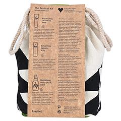 FESTIVAL Kit 1 Packung - Rückseite