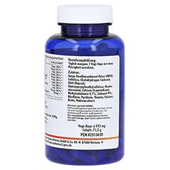 SELEN ZINK Vit.B Komplex Vegi-Kaps 480 mg 120 Stück - Vorderseite