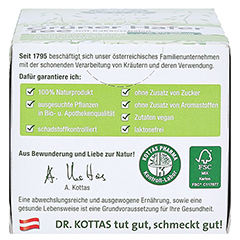 GRÜNER HAFERTEE mit Kakaoschalen Dr.KOTTAS Fbtl. 20 Stück - Rechte Seite