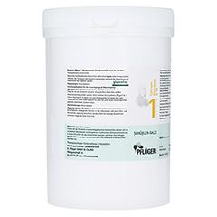 BIOCHEMIE Pflüger 1 Calcium fluoratum D 12 Tabl. 4000 Stück