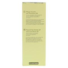 PLANTANA Olive Butter Pflege Duschbad 500 Milliliter - Rückseite