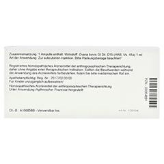 OVARIA GL D 15 Ampullen 10x1 Milliliter N1 - Rückseite