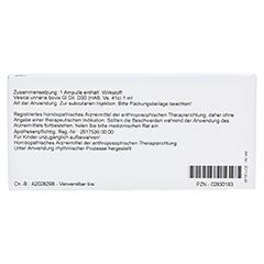 VESICA URINARIA GL D 30 Ampullen 10x1 Milliliter N1 - Rückseite