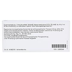ARTERIA RENALIS GL D 5 Ampullen 10x1 Milliliter N1 - Rückseite