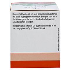 Himbeerblätter TEE Filterbeutel 20x2.5 Gramm - Rechte Seite